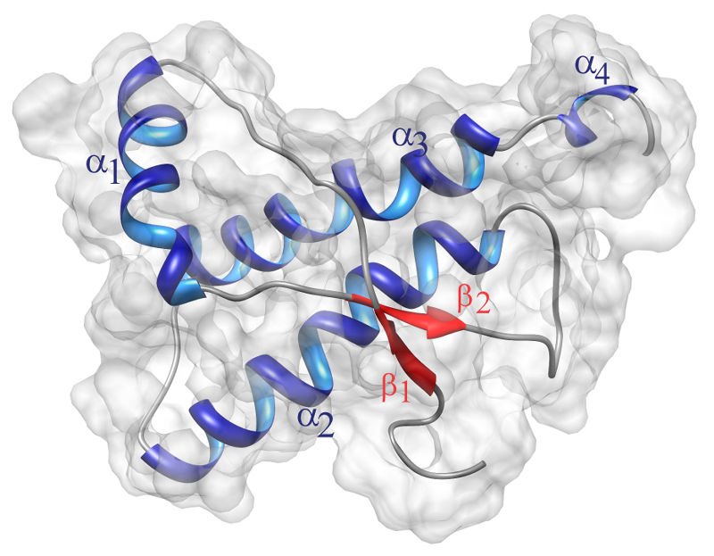 Estructura tridimensional del prión humano