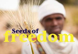 semillas de libertad