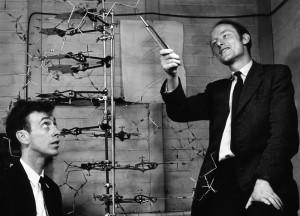 Watson y Crick Modelo ADN