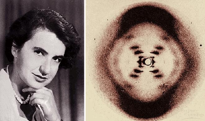Franklin y difracción rayos-X DNA