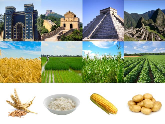 cultivos que hicieron posible los imperios